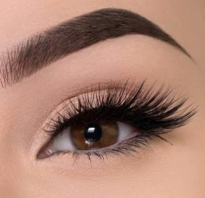 Private Label 3D Mink Lashes Free Sample